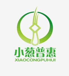 深圳市小葱普惠投资管理有限公司